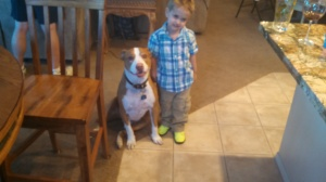 dogs love him