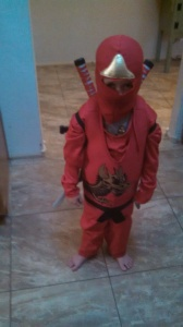 NINJAGO! His fave costume